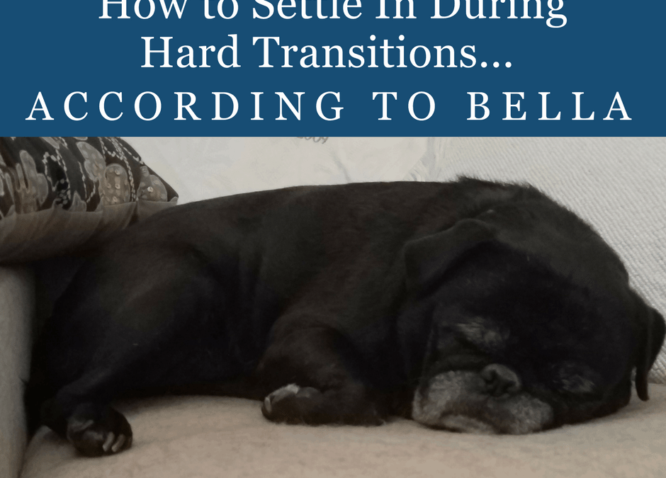 How to Settle In During a Hard Transition